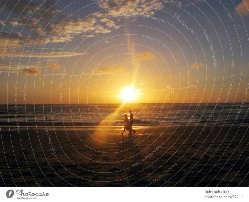 walkin sunset Sunset Going Clouds Ocean Light Dark Calm walking Human being Water Sky Bright Moody Sand