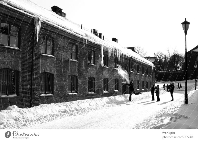 Oslo Icicles Winter icicles snow Black & white photo cold snowball
