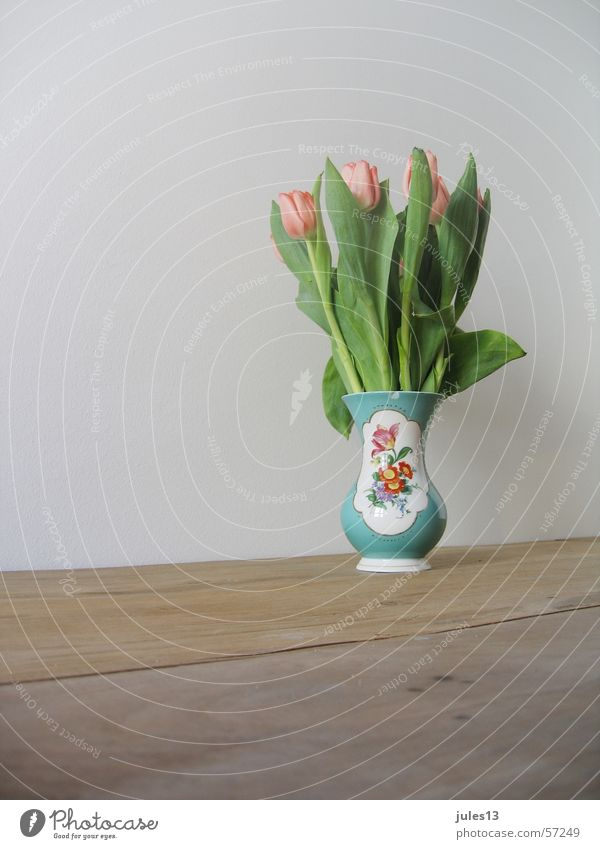 spring Tulip Vase Flower Wall (building) White Table Wood Green Multicoloured brown. cut Kitsch