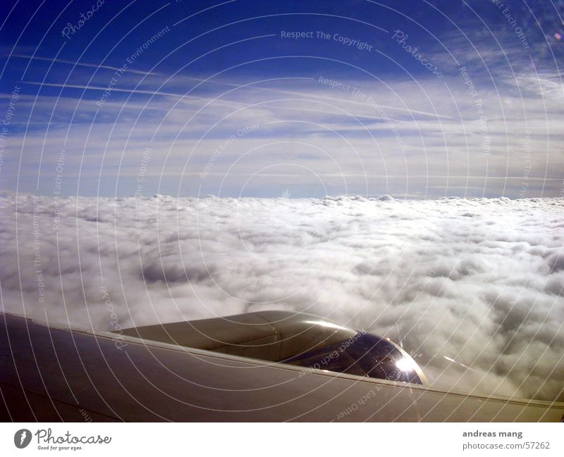 freedom Airplane Engines Clouds Cloud cover Horizon Ocean Sky Covers (Construction) nozzle Wing Blanket Flying sea of clouds fly aeroplane Jet engine heaven
