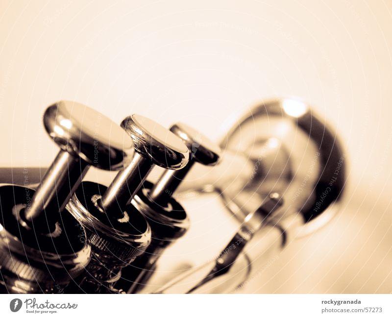 Music Musician Wind instrument Concert Musical instrument Tin Jazz Blues Trumpet Human being Brass band