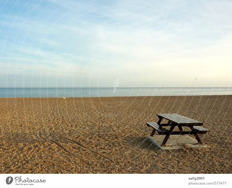 Picnic on the beach? Relaxation Calm Meditation Vacation & Travel Trip Freedom Summer Beach Ocean Table Landscape Sky Sunlight Autumn Beautiful weather Coast