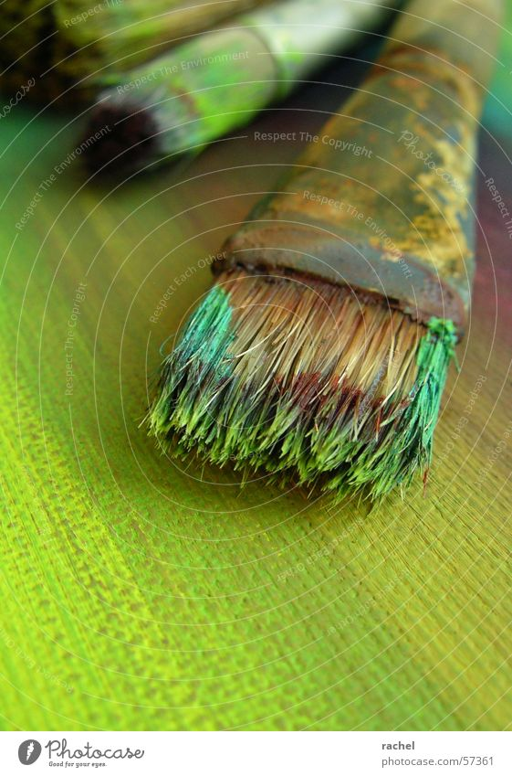 Green Colour Art Dirty Violet Image Turquoise Painting and drawing (object) Cardboard Paintbrush Subsoil Second-hand Olive Arts and crafts  Bristles