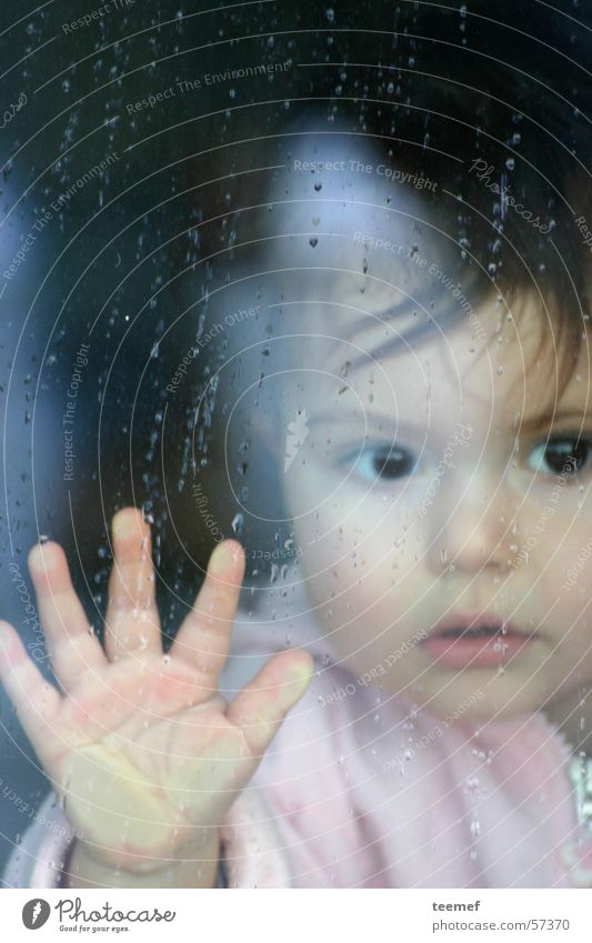 rainy day Girl Child Portrait photograph Rain Autumn Hand Breath Curiosity Window Pane Face Eyes