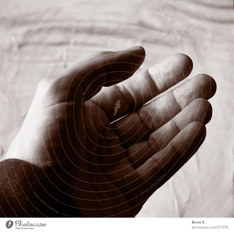 Give me your hand! Hand Palm of the hand Fingers Beg Invite Demand stretch Desire accommodate sb./sth. Open