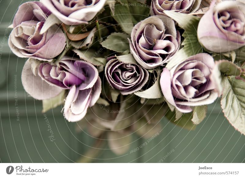 Flower Loneliness Dark Sadness Blossom Death Feasts & Celebrations Retro Grief Past Violet Plastic Rose Kitsch Cloth Bouquet