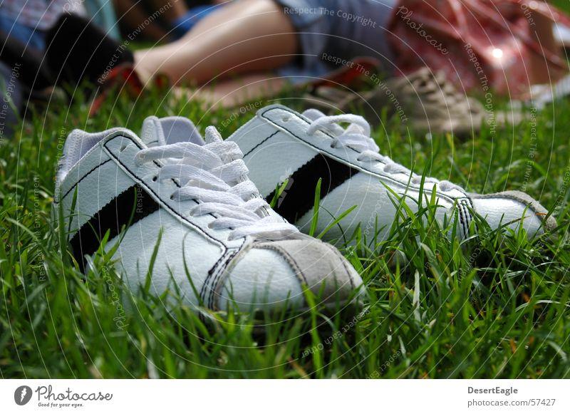 Shoes in the grass Footwear Sneakers Exterior shot Vintage car Chucks Summer Lawn Cool (slang) Joy