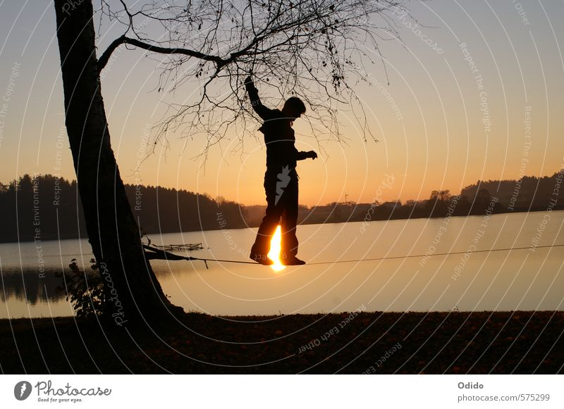 Slacklining at the lake Human being Feminine Woman Adults 1 Nature Landscape Water Sky Sunrise Sunset Autumn Tree Lakeside To hold on Sports Hip & trendy