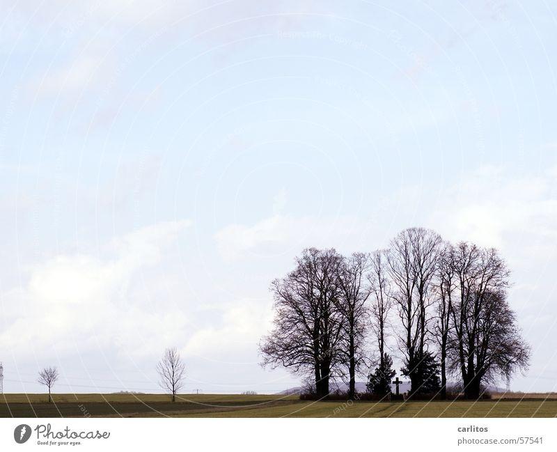 Sky Tree Black Clouds Dark Autumn Gray Back Hope Grief Monument Damp Memory Eternity Tears Grave