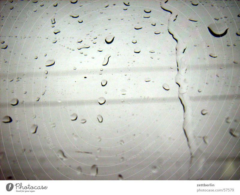 Gray Rain Glass Weather Drops of water Window pane November Dreary Pane Bad weather