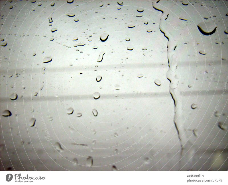 Still Rain Pane Dreary Gray November Bad weather Drops of water Window pane Glass Weather