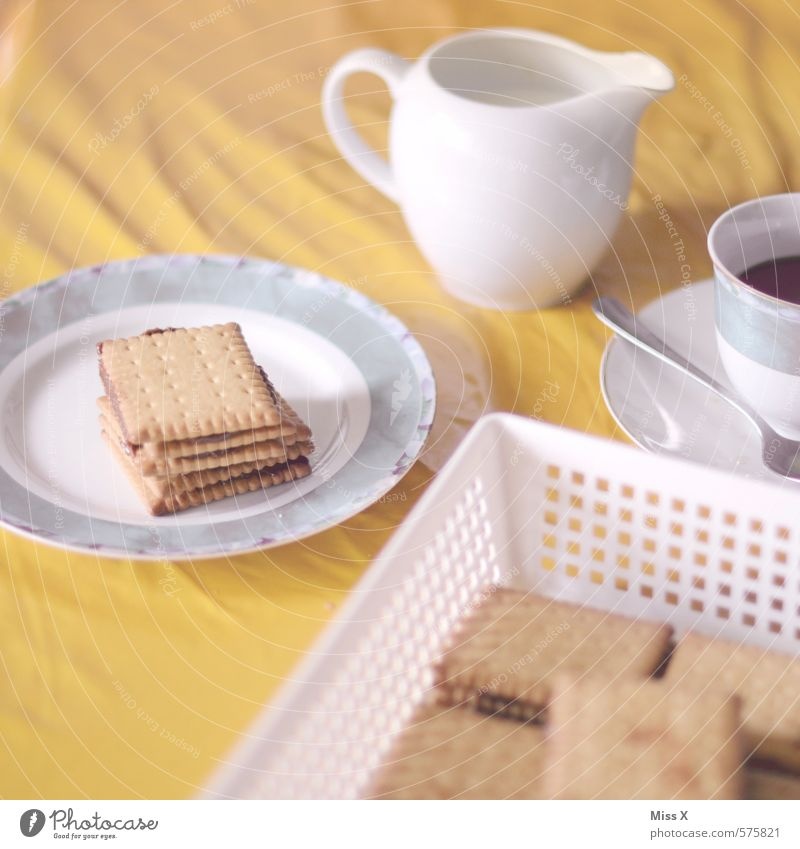 Dog Cold Food Nutrition Beverage Sweet Retro Coffee Delicious Cake Crockery Cup Plate Baked goods Nostalgia Chocolate