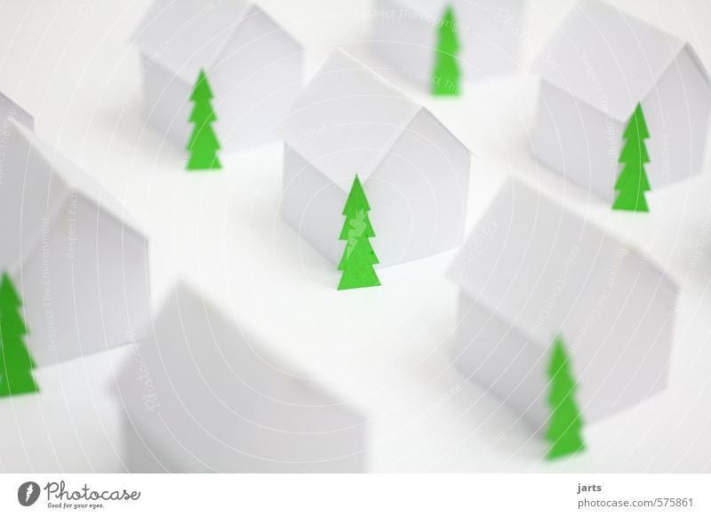 Christmas & Advent Plant Tree Calm House (Residential Structure) Winter Life Simple Christmas tree Luxury Town Detached house House building Dream house