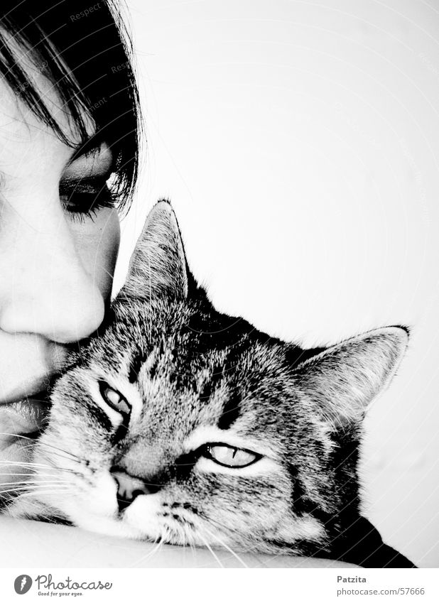 Woman Human being Eyes Cat
