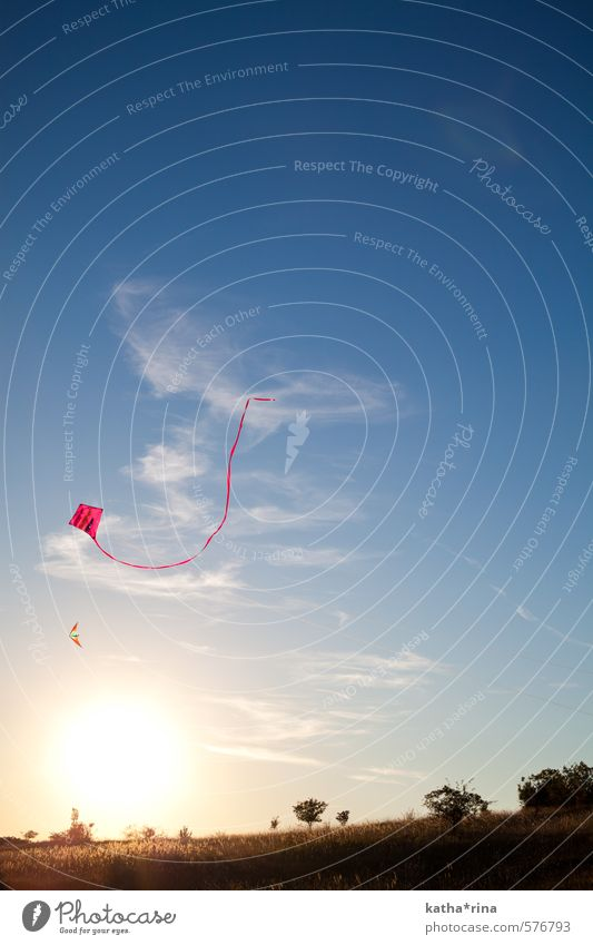 Beautiful Autumn. Hang gliding Kite Sunrise Sunset Beautiful weather Infinity Blue Gold Pink Adventure Experience Vacation & Travel Leisure and hobbies Joy