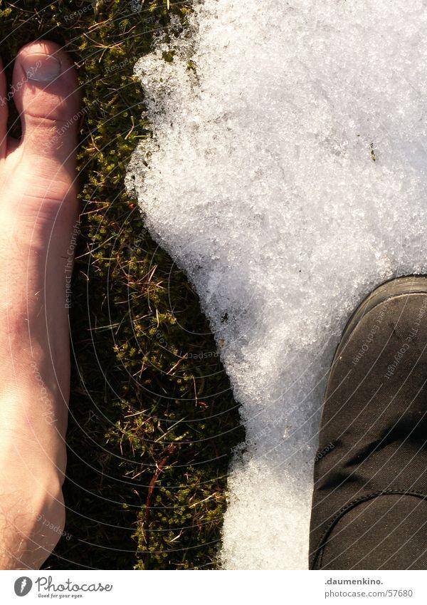 Between the times Meadow Toes Footwear Light Winter Spring Summer Cold Physics Disagreement Snow Feet grass Sun Skin Legs Warmth Contrast Barefoot