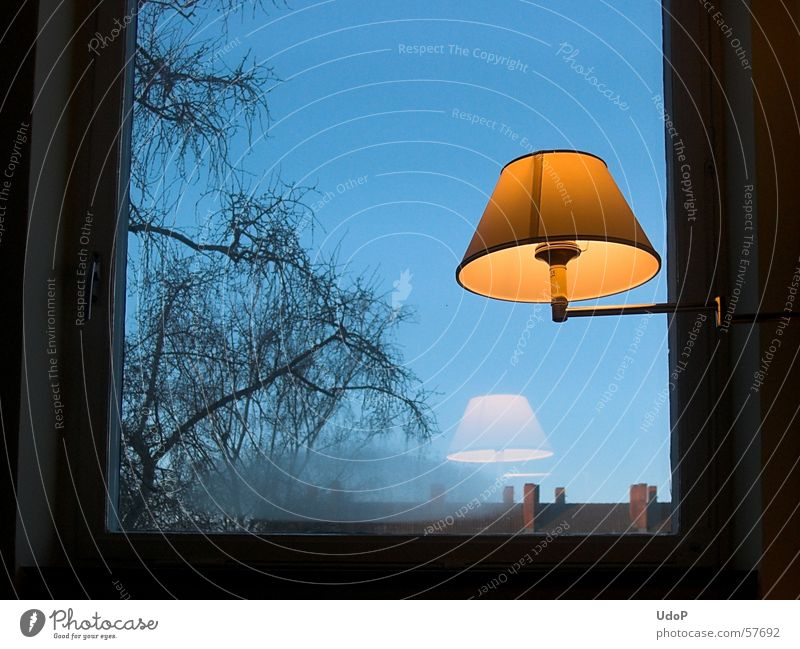 Good morning Berlin Lamp Window Yellow Tree Cold Impersonal Sky Blue Orange Morning Reflection