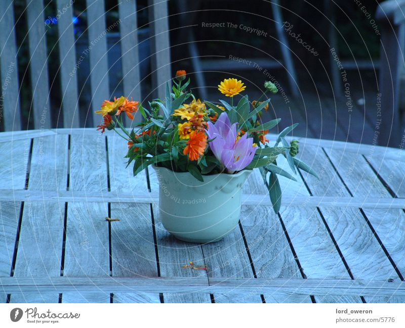 Flower Table Pot Flowerpot
