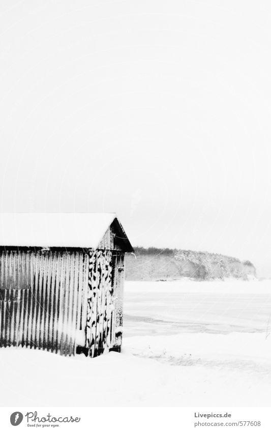 Wreechen/Rügen Landscape Winter Ice Frost Snow Coast Gray Black White Black & white photo Deserted Day Contrast
