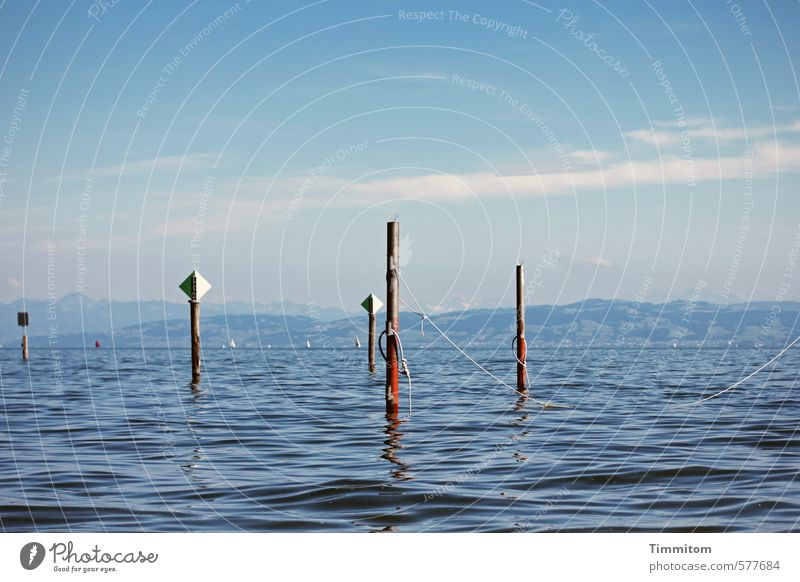 I'll see what I can do. Vacation & Travel Environment Water Sky Summer Beautiful weather Lake Lake Constance Pole Wood Signs and labeling Road sign Esthetic