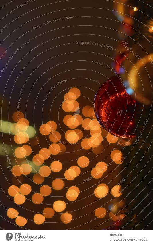 glitter Winter Fog Illuminate Brown Red christmas ball sparkle bokeh Colour photo Subdued colour Exterior shot Deserted Copy Space left Copy Space top Night