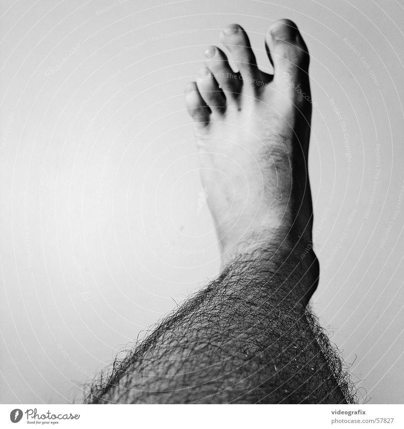 step out Kick butt shit foot feet