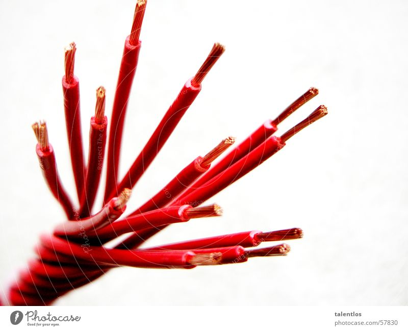 Red Electricity Cable Vessel Electronic Copper Electronics Reticular Electrical equipment Twisted