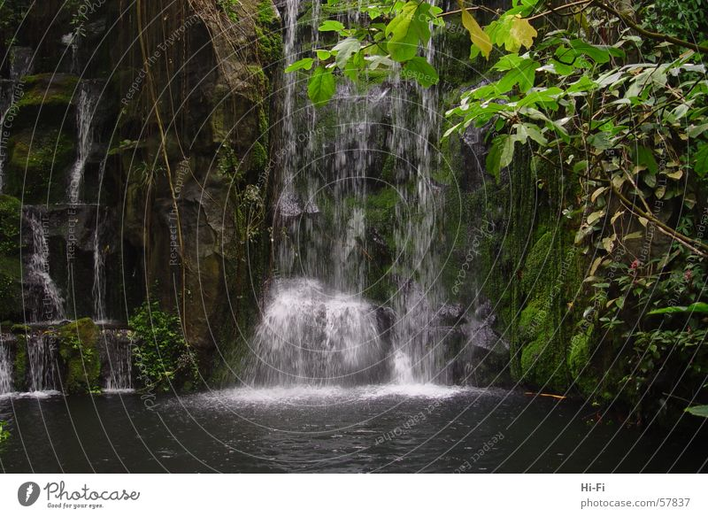 waterfall Pond Lake Splashing Mountain lake Mountain stream Water Waterfall Nature Rain water feature Spray