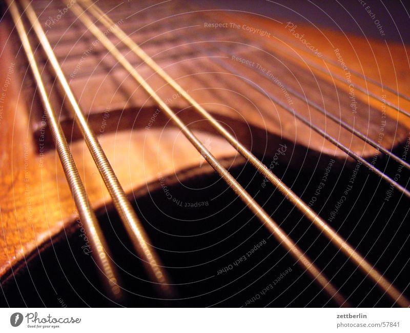 mandolin Mandolin Plucked instrument String instrument Folklore music Musical instrument string Song Concert folk song music school