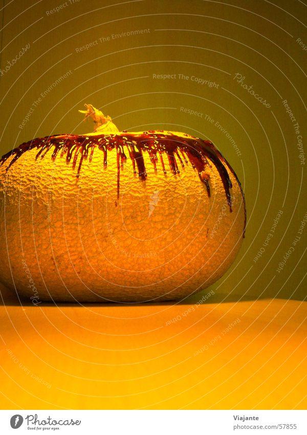 Nature Garden Orange Food Nutrition Kitchen Harvest Berries Hallowe'en Production Pumpkin Ingredients