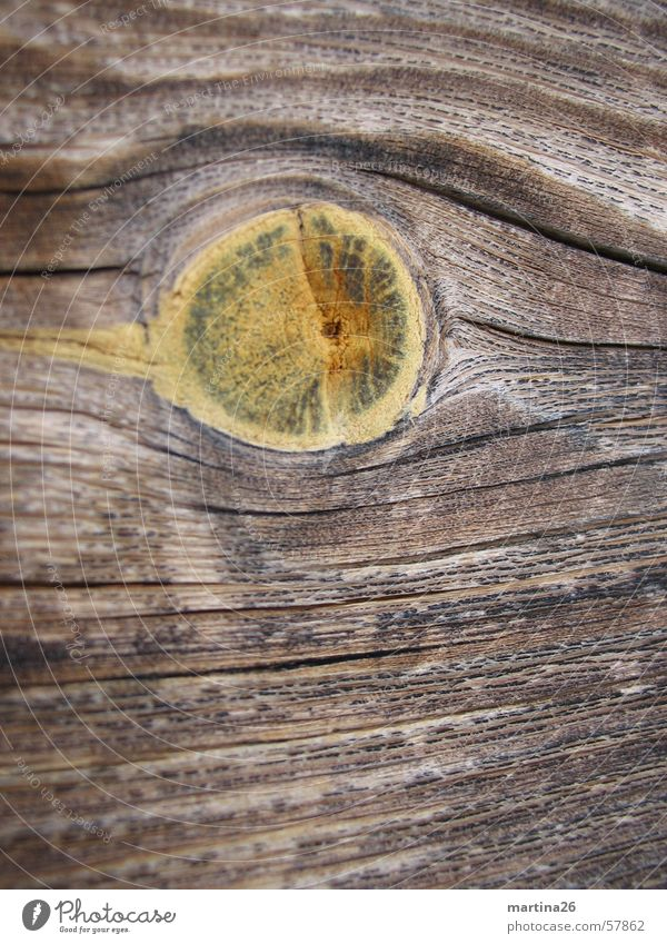 knot hole Wood Exterior shot Brown Physics Wood flour Nature Haptic Surface Wood strip Firewood Timber Knothole Macro (Extreme close-up) Close-up Wood grain