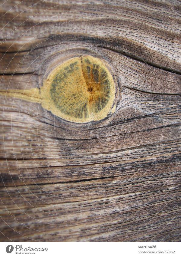 knot hole Wood Exterior shot Brown Physics Wood flour Nature Haptic Surface Wood strip Firewood Timber Knothole Macro (Extreme close-up) Close-up Wood grain