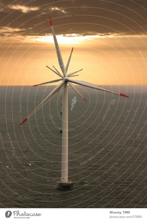windflower Wind energy plant Sunset Ocean Synchronous Energy industry Wing Power