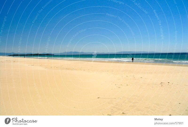 LonelyMan Beach Atlantic Ocean To go for a walk Spain Andalucia Tarifa Summer Vacation & Travel Far-off places Sky Sand Wind