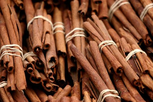 Spices 1 Tree bark Rod Bundle Herbs and spices Aromatic Delicious Expensive Laurel plants Cinnamon zinemin cinnamomum kinnámomon cinnamic aldehyde
