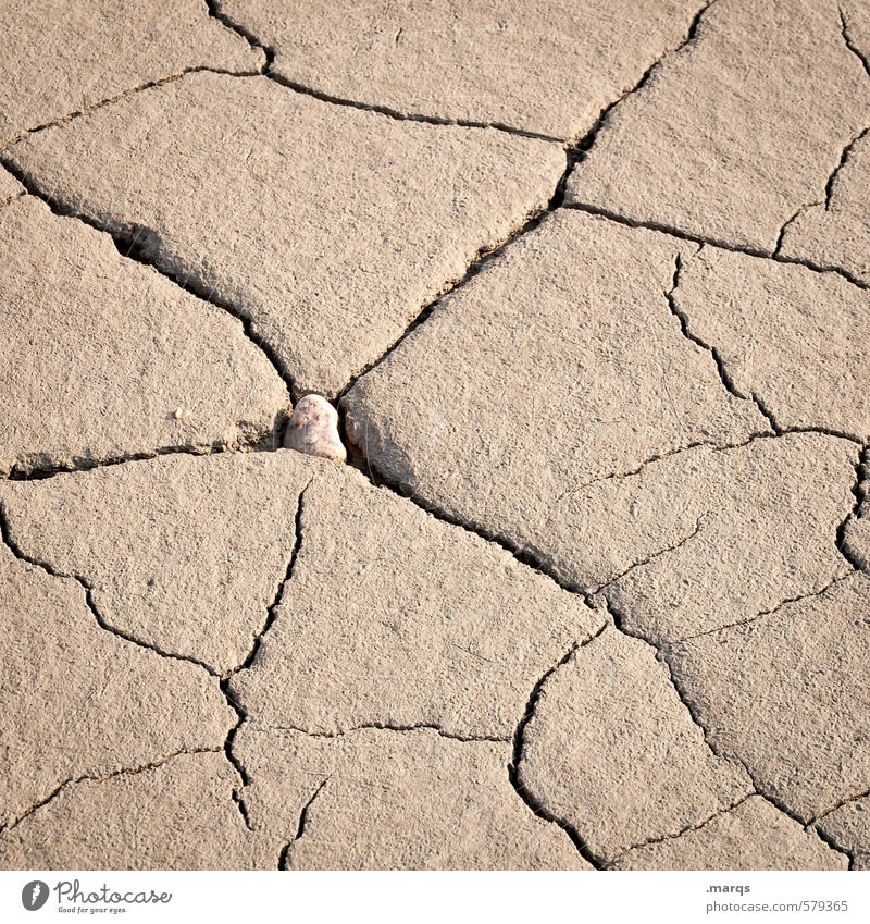 Mother Earth Environment Nature Elements Climate change Brown Dry To dry up Drought Loam Crisis Crack & Rip & Tear Shriveled Natural Under Colour photo