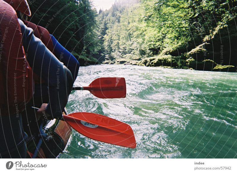 Nature Water Green Beautiful Summer Joy Sports Playing Swimming & Bathing Together Waves Leisure and hobbies Natural Action Authentic Tourism