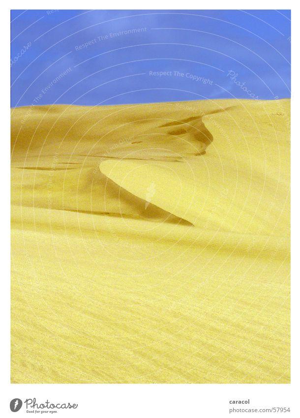 sand sculpture Sky Yellow New Zealand Sand landscape Desert blue Dune