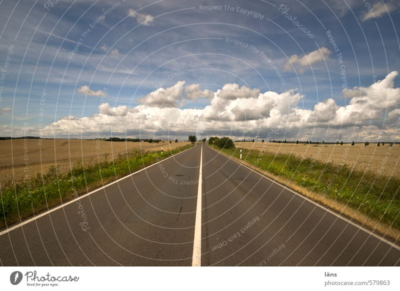 launch Landscape Sky Clouds Horizon Summer Beautiful weather Field Street Line Stripe Environment Asphalt Direct Signs and labeling Marker line Colour photo