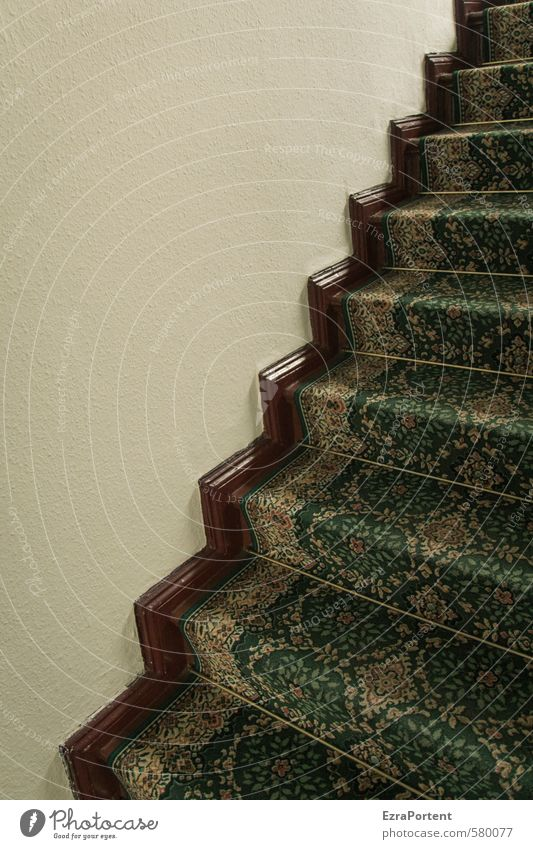 zigzag Living or residing Flat (apartment) Interior design Decoration Room Wall (barrier) Wall (building) Stairs Ornament Line Stripe Brown Green Carpet
