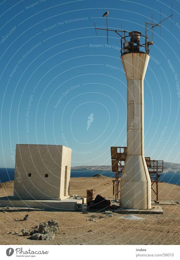 beacons Lighthouse Beacon White-tailed eagle Blue sky Island