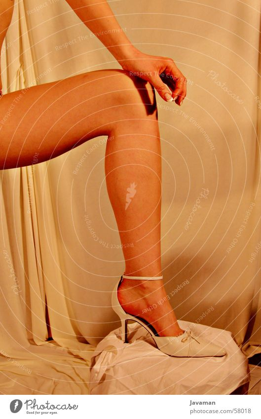 glamorous Woman Glamor Footwear Eroticism Legs Fashion