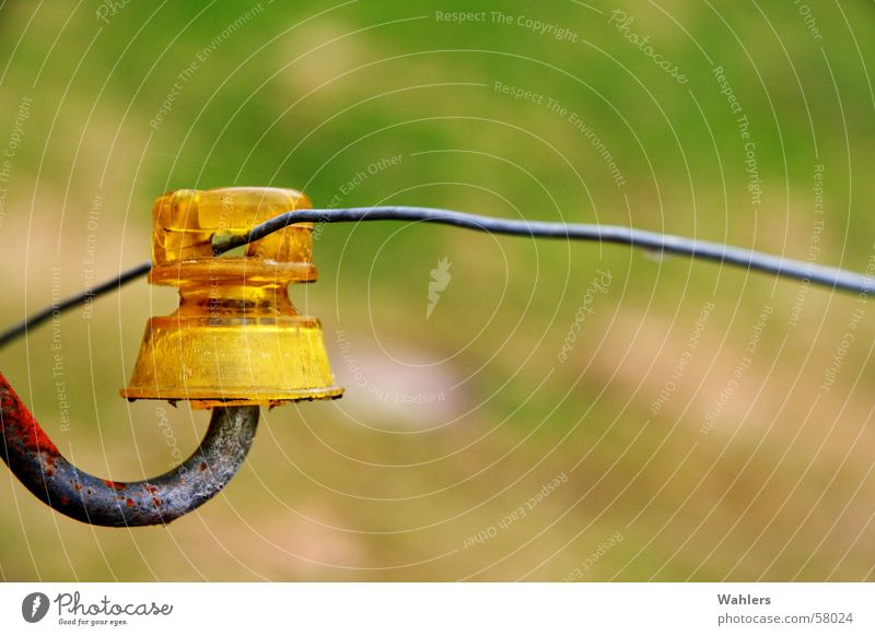Yellow Meadow Field Electricity Rust Fence Wire Pole Electrocution