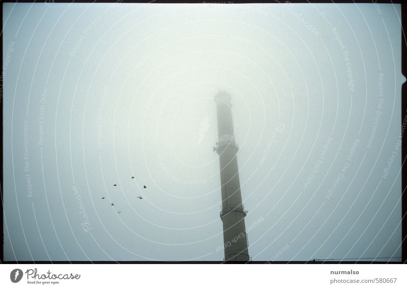 Sky Nature Dark Environment Autumn Lifestyle Art Bird Moody Energy industry Dream Weather Fog Gloomy Change Grief