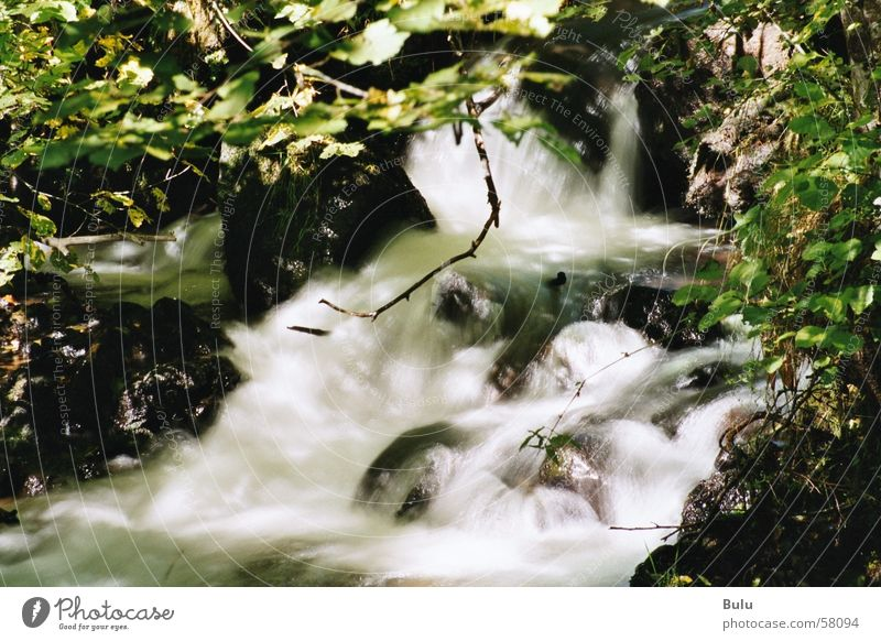 by the rushing brook.... Brook Exterior shot Long exposure Hissing Mountain stream Water Waterfall Nature White crest Primordial Wild River water