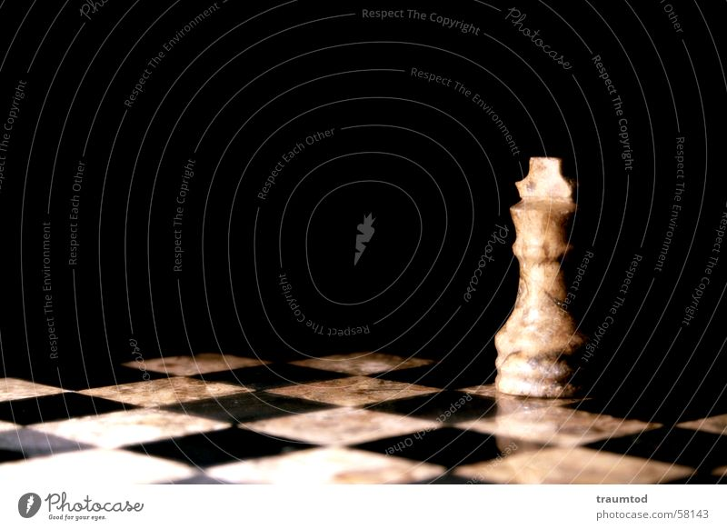 White Black Loneliness Playing Think Tower Horse Lady Checkered King Runner Chess Chessboard Stone Marble Dull