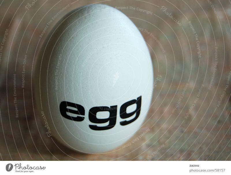 an egg Easter Easter egg Art Sculpture Eggshell Barn fowl Nutrition Characters Columbus Monument