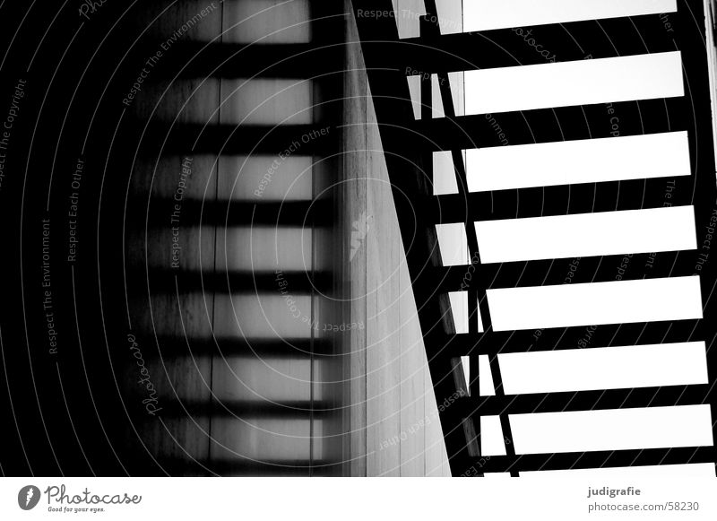 upward Reflection Black White Construction Light Detail Black & white photo Stairs Upward Downward Handrail Shadow Architecture