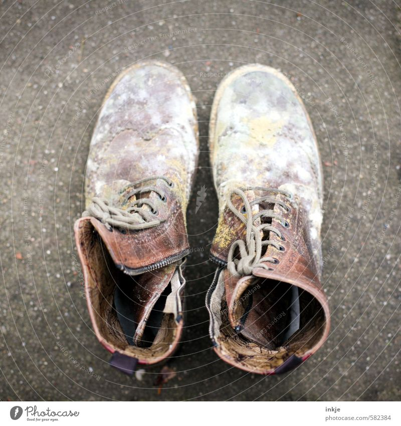 Note: Never store leather shoes in a damp cellar. Footwear Boots Leather shoes Laced boot Mold Old Disgust Brown Gray White Emotions Moody Decline Transience
