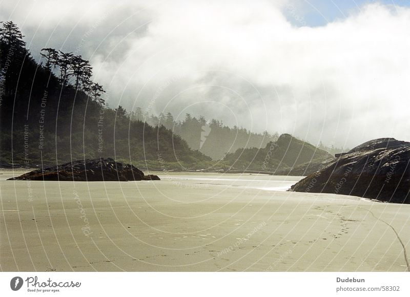 Tofino Beach Sand Fog Sunrise West Coast Forest Pacific beach Canada morning rocks trees Vancouver Island rainforest Long Beach dudebun photocase Stone block